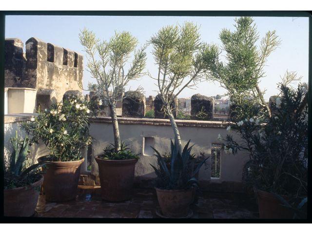Kasbah - Maisons en terre