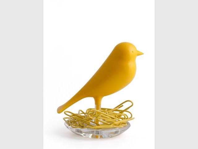 Trombone canari - shopping-oiseaux