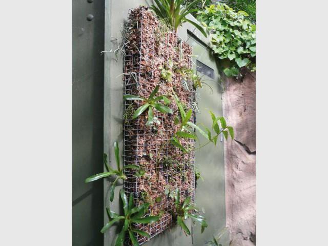 Les règles de l'architecture végétale - Architecture végétale