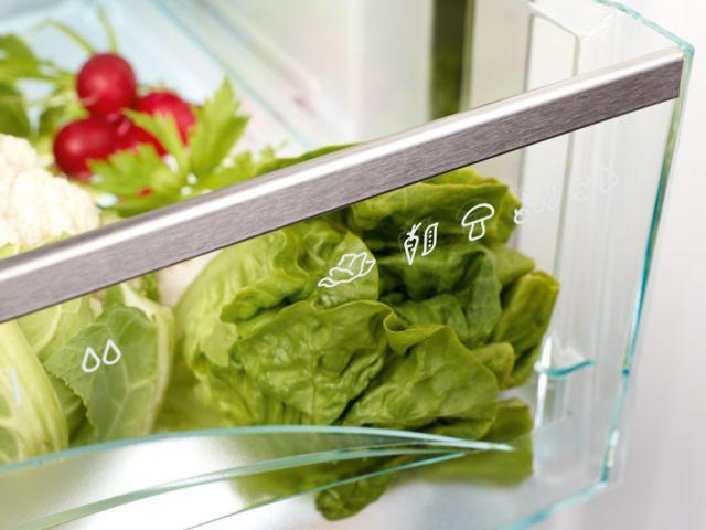 Bien ranger et entretenir son réfrigérateur - Bien choisir son réfrigérateur