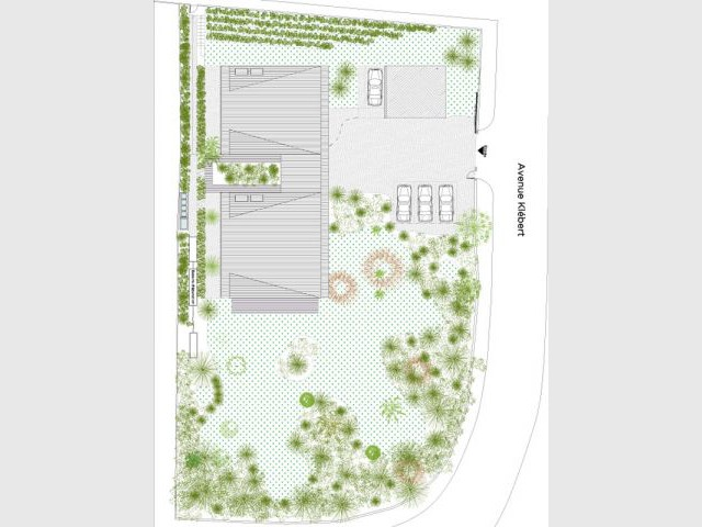 Plan de masse - XLGD Architectures