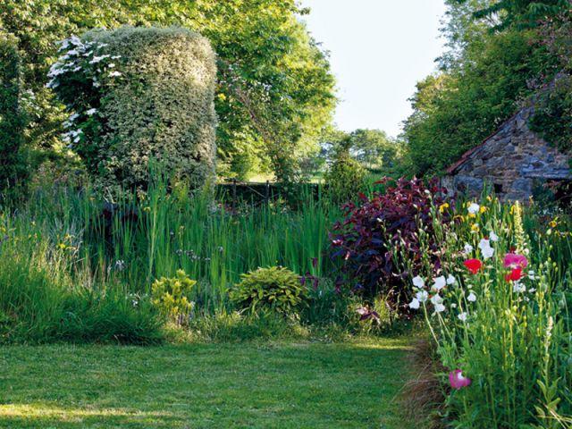Le jardin, ce n'est pas qu'au printemps ! - Silence ça pousse