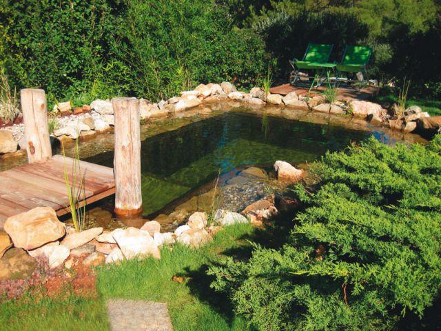 1 bassin artificiel effet naturel for Bassin poisson sans pompe