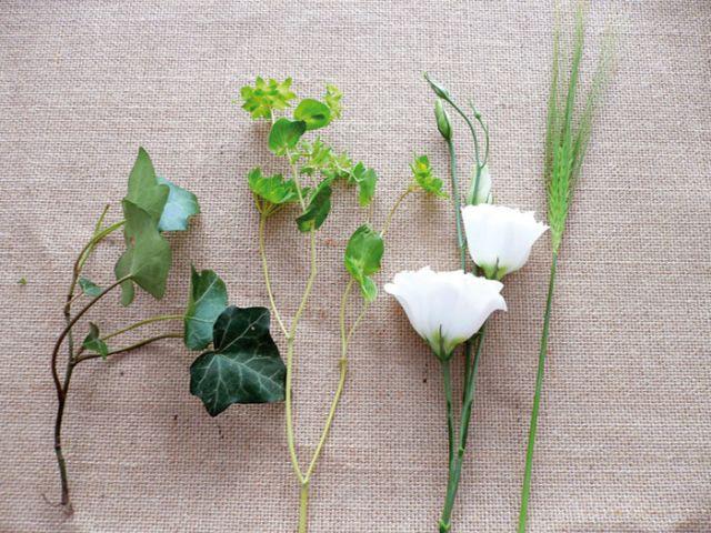 Le choix des végétaux - Décoration de mariage