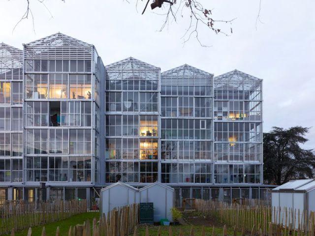 Les serres, une surface supplémentaire - Des logements aux allures de serres
