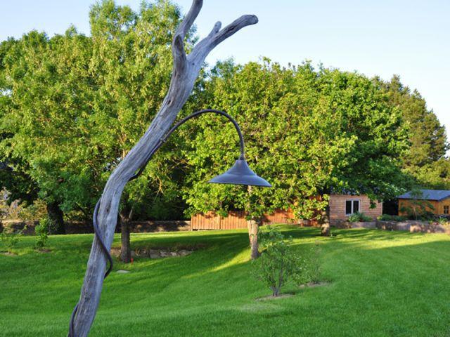 S'inspirer de la nature - reportage terrasse
