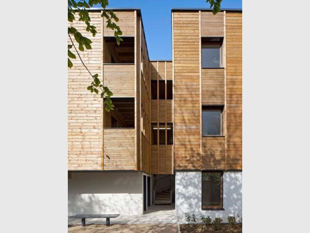 Des logements ouverts sur la nature - logement bois