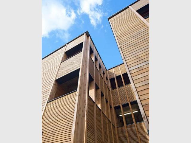 Des ouvertures de même dimension - logement bois