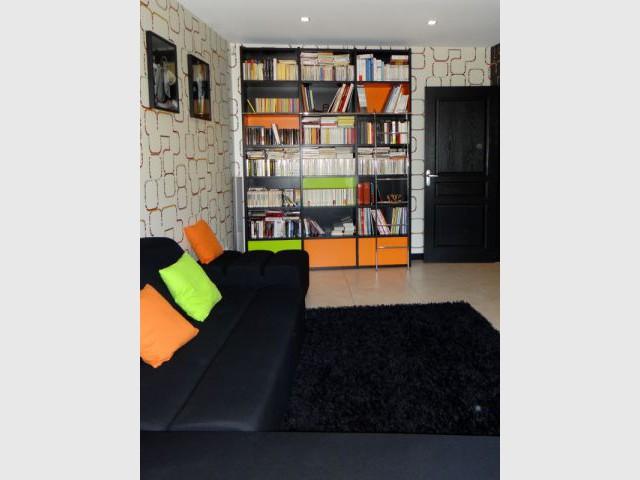 Une bibliothèque customisée - Reportage salon télé