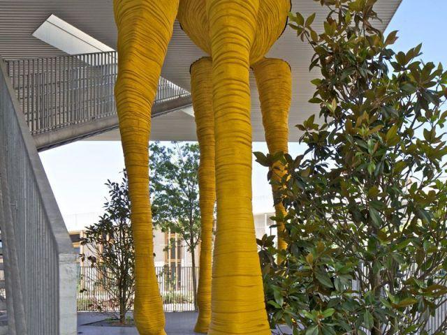 Les pattes de la girafe - Crèche Girafe