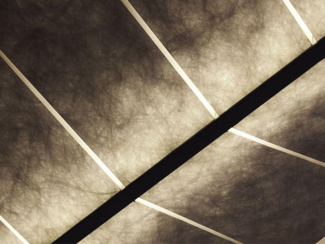 Détail ailes - Une plume de lumière à géométrie variable