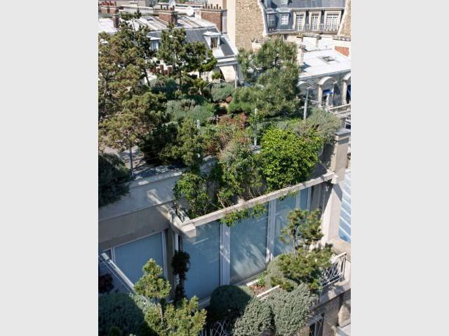 un balcon faon garrigue carnet de travail dun jardinier paysagiste