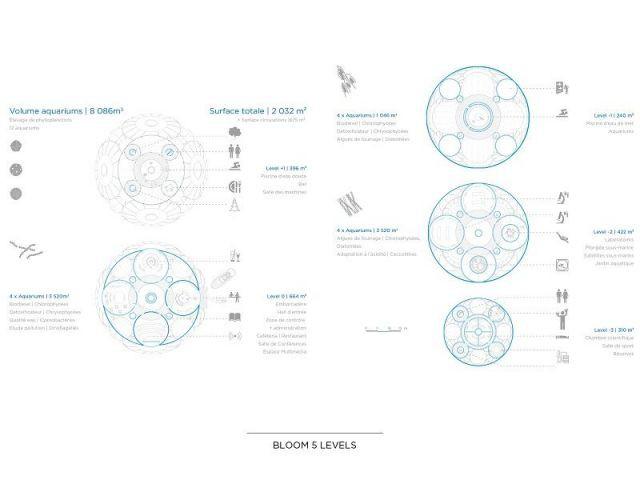 Plans - Bloom