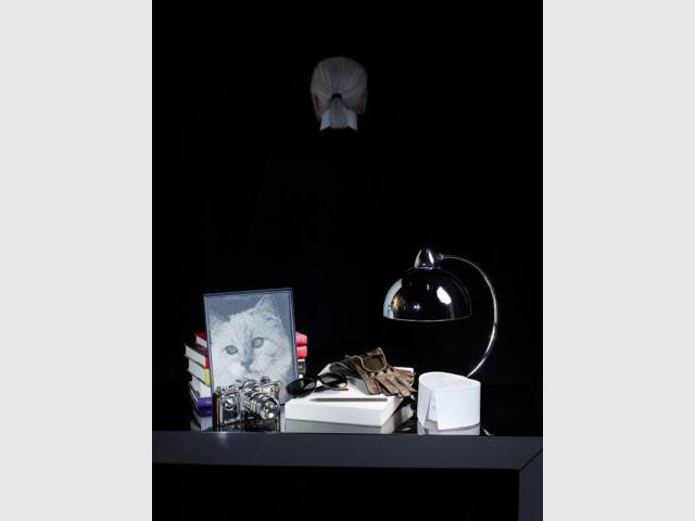Le séjour vu par Karl Lagerfeld - But vu par Lagerfeld