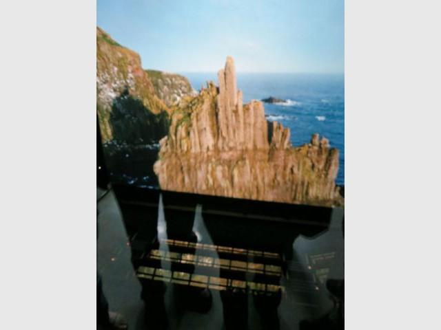 """Attraction : Imax 3D du film """"Destins sauvages"""""""