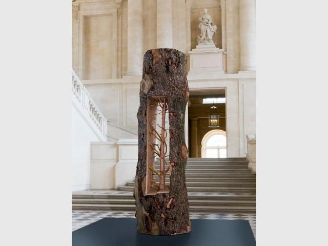 Pluie de troncs d 39 arbres calcin s versailles for Exposition jardin versailles 2015