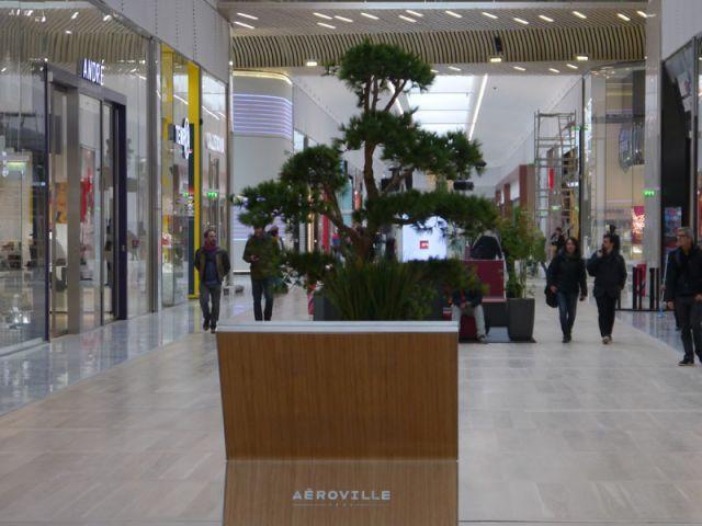 Une clientèle à trois visages - Aéroville - centre commercial