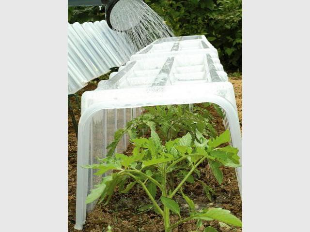 Protéger les plantes avec une serre - Jardin en hiver