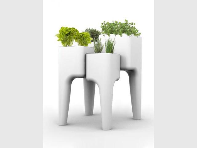 Kiga - Observeur du design