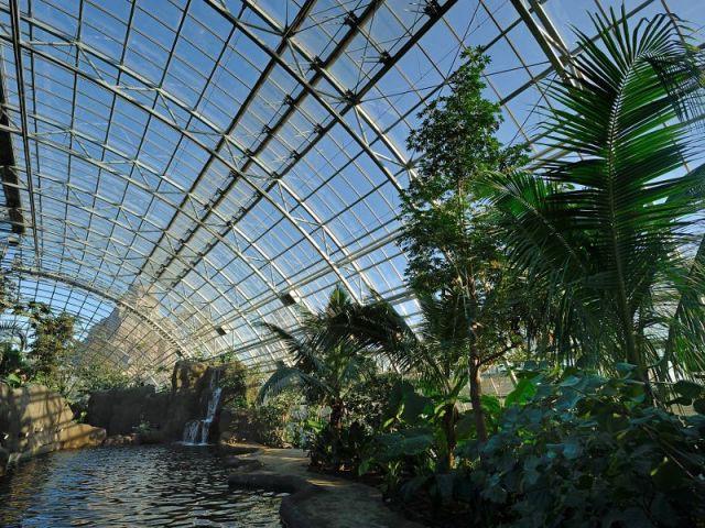 22 arches  - Serre tropicale au zoo de Vincennes
