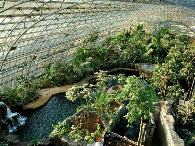 Une réflexion sur l'écosystème - Serre tropicale au zoo de Vincennes