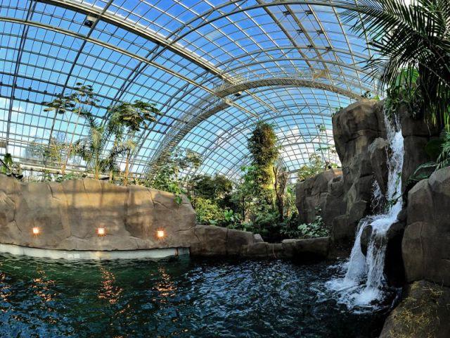 L'importance du paysage  - Serre tropicale au zoo de Vincennes