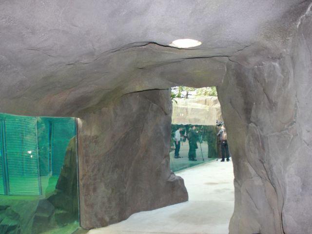 Un rocher à  l'intérieur de la serre  - Serre tropicale au zoo de Vincennes