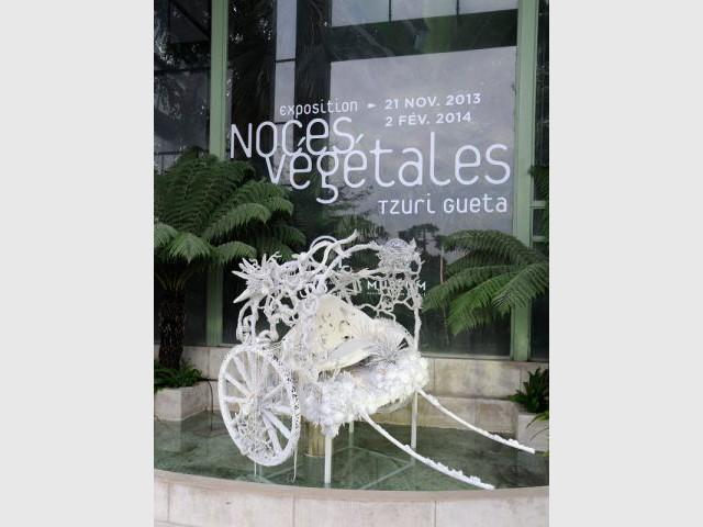 Exposition Jardin des Plantes - Noces végétales