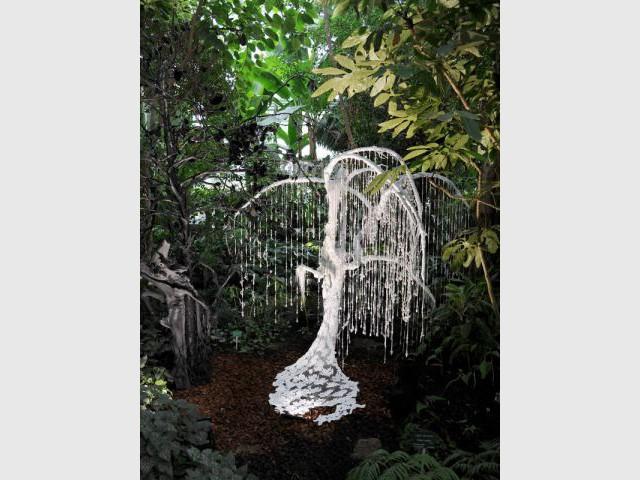 L'arbre de la mariée - Exposition Jardin des Plantes - Noces végétales