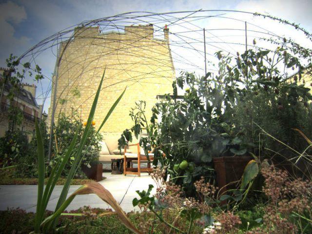 Un cadre idéal pour le développement des plantes - La cabane polypode