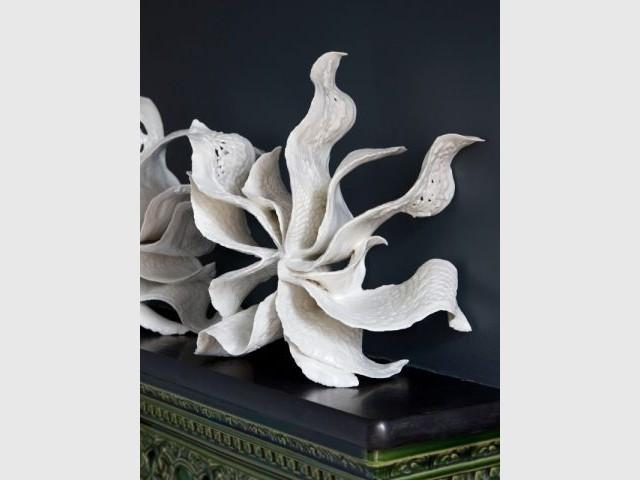 L'algue sculpturale d'Alice Riehl - Une collection d'objets décoratifs dédiée au motif