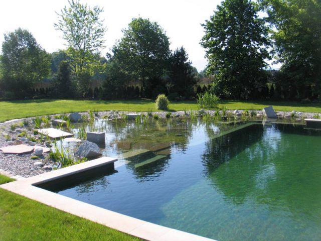 Les baignades naturelles - Bien choisir son traitement pour sa piscine