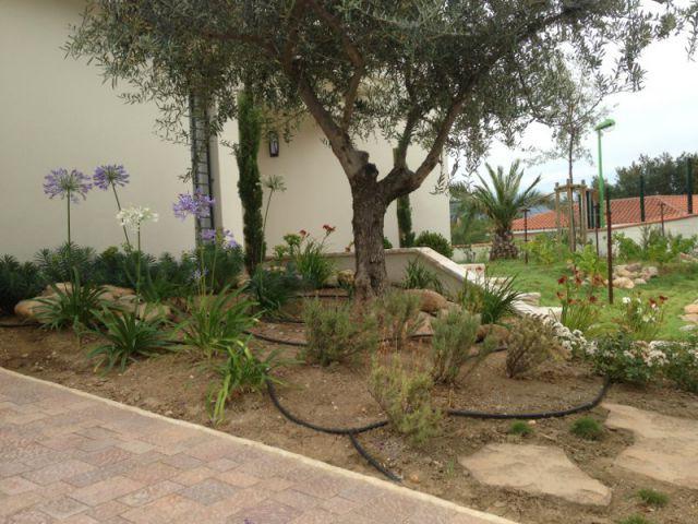 Une entrée très méditerranéenne  - Aménagement extérieur d'une villa avec patio et piscine