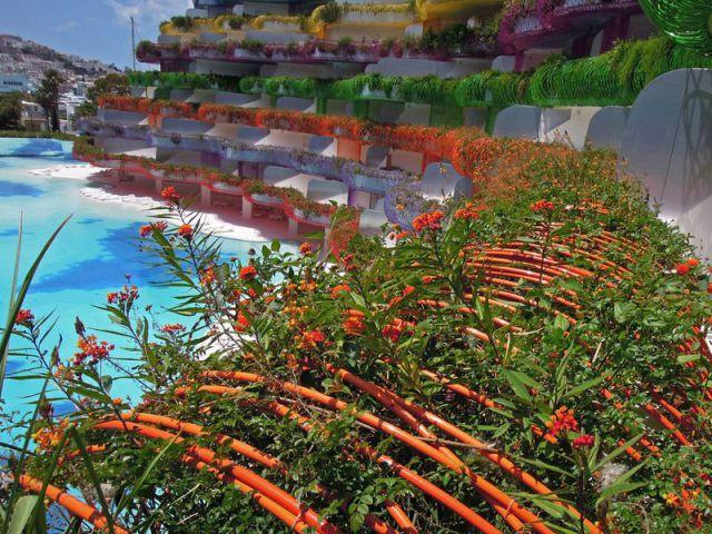 Des balcons fleuris - Les boas