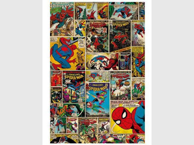 Caractéristiques Techniques : Toile La Spiderman Comics