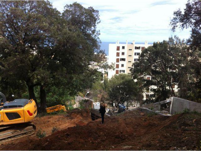 Densification urbaine - Demeures corses - maison dans les arbres