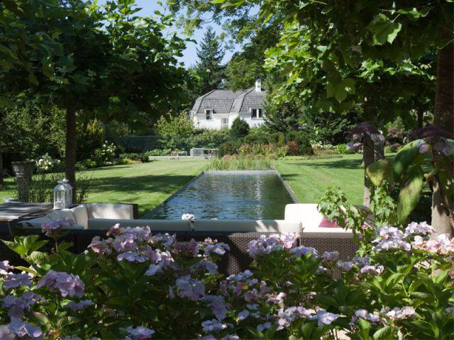 Une piscine fondue dans un jardin 2/2 - Baignades naturelles