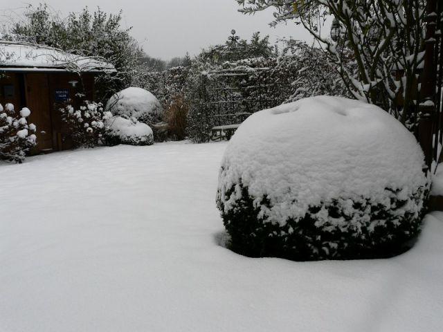 Ne pas voir systématiquement la neige comme un ennemi - Les bons réflexes face au gel