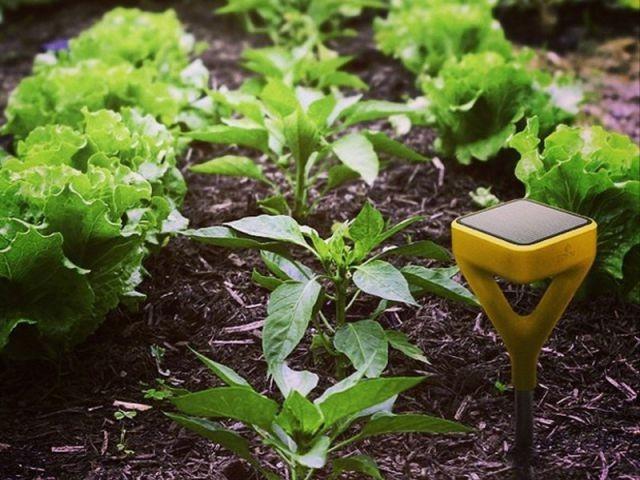 Un système de jardin intelligent