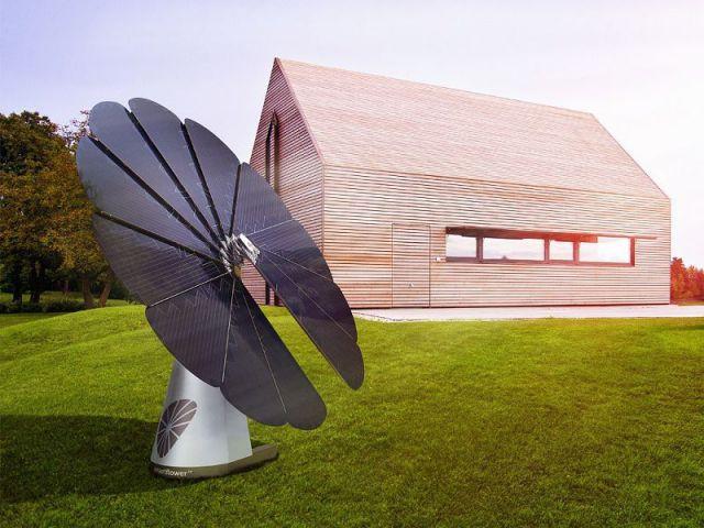 1 tournesol photovolta que planter dans son jardin. Black Bedroom Furniture Sets. Home Design Ideas