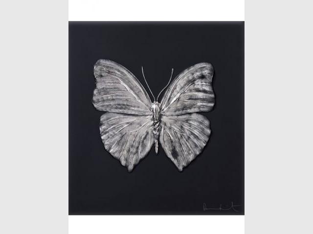 Des créations entre l'objet et l'oeuvre d'art - Damien Hirst et Lalique, 2015