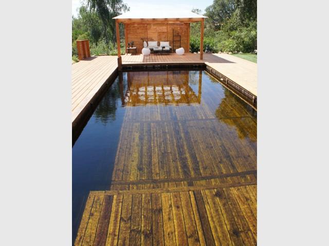 Une piscine familiale spécialement adaptée pour les enfants  - Piscine familiale naturelle
