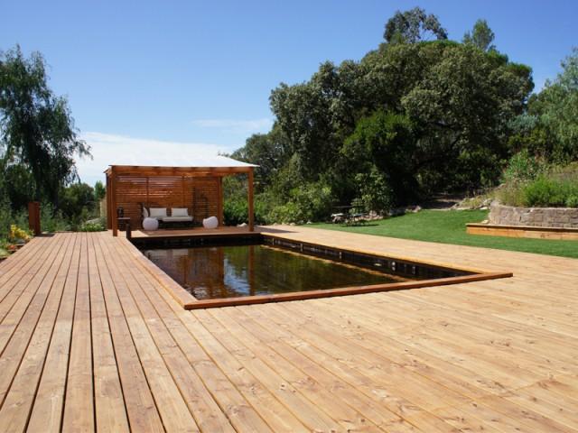 Une piscine parfaitement intégrée dans son environnement - Piscine familiale naturelle