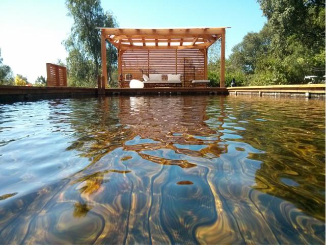 Une eau propre sans produit chimique - Piscine familiale naturelle