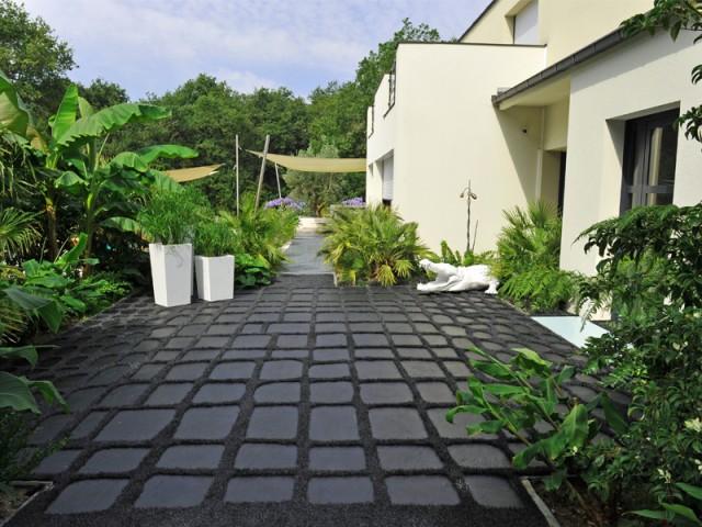 Une végétation aussi luxuriante que dans la jungle - Jardin croco chic