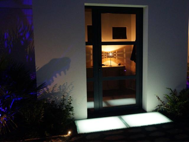 Un jardin qui prend vie la nuit - Jardin croco chic