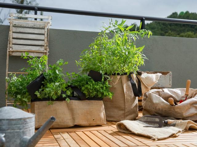 Une disposition à même le sol pour un effet champêtre - Balcons : donnez du rythme grâce aux jardinières !
