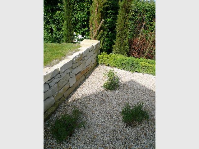 Une végétation secondaire face à la structuration du site  - Jardin stratifié