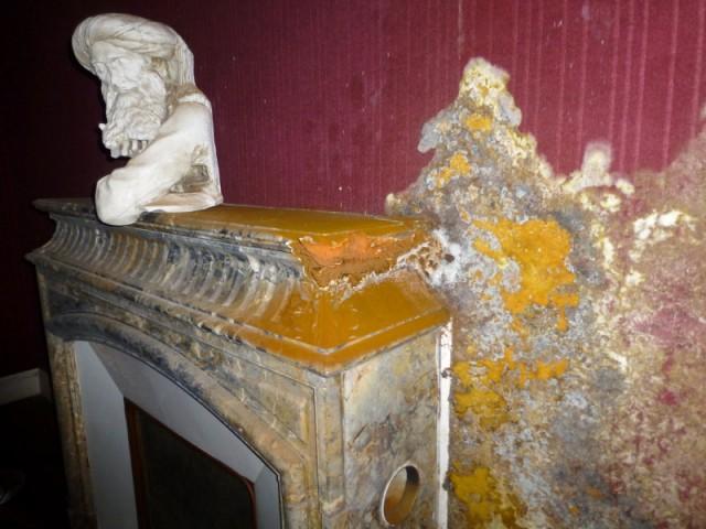 Ventiler pour supprimer l'humidité dans la pièce touchée par les champignons - Mérules et parasites du bois