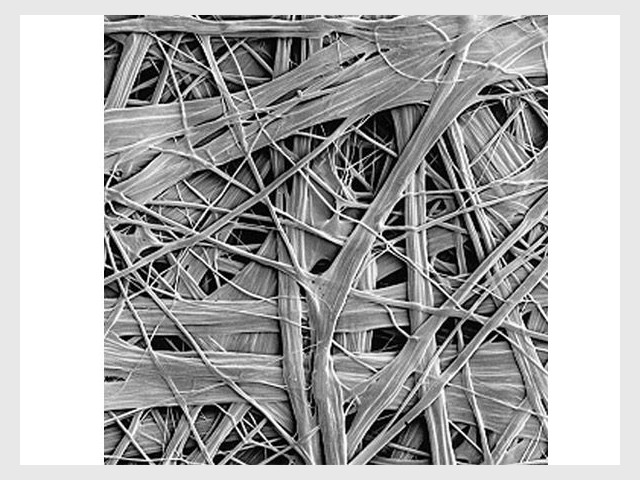Une membrane respirante pour l'étanchéité - maison surélevée